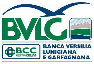 new logo BVLG rettangolare